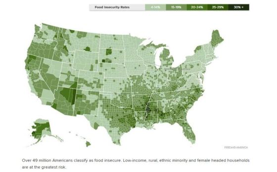 Food Insecurity Rates